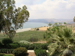 The view from the Mt. of the Beatitudes