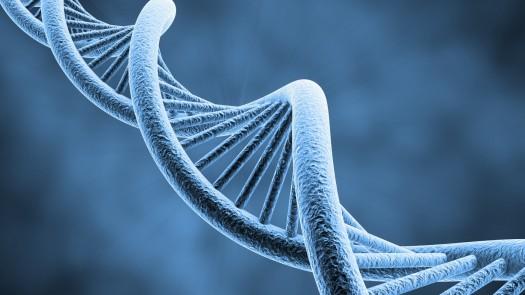 DNA_Helix.jpg